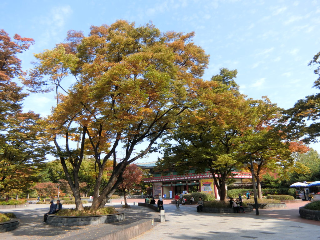 オリニ大公園内の10月は紅葉が始まります