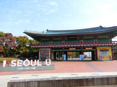 ソウルで子連れで楽しめるオリニ大公園