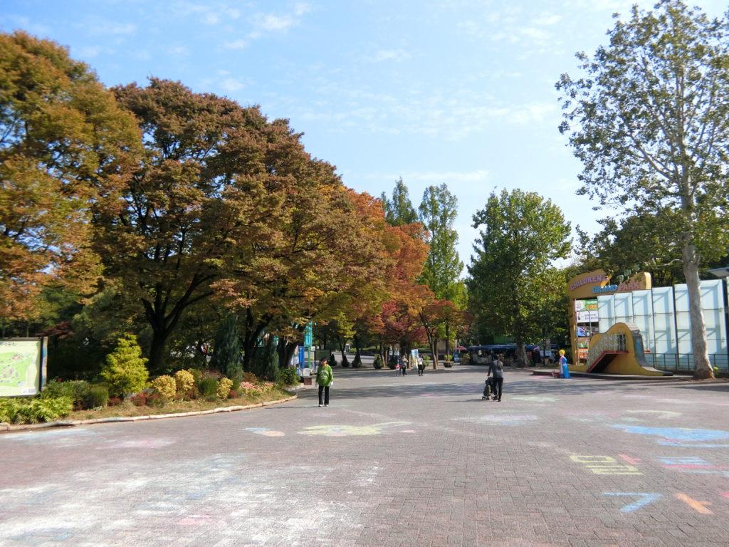 オリニ大公園内は、ソウルとは思えないほど自然豊か